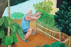 coltivazioni 50x60